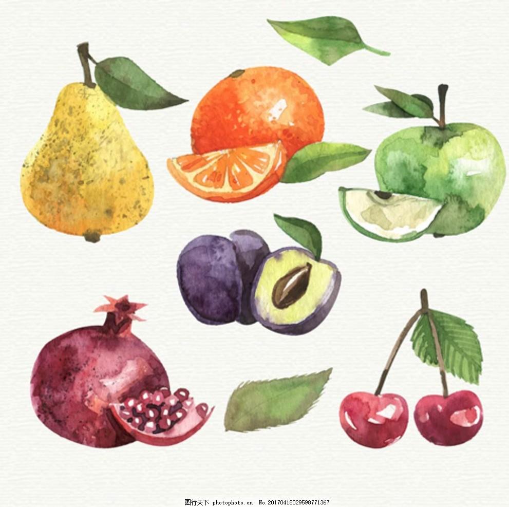 手绘水彩各种水果插图