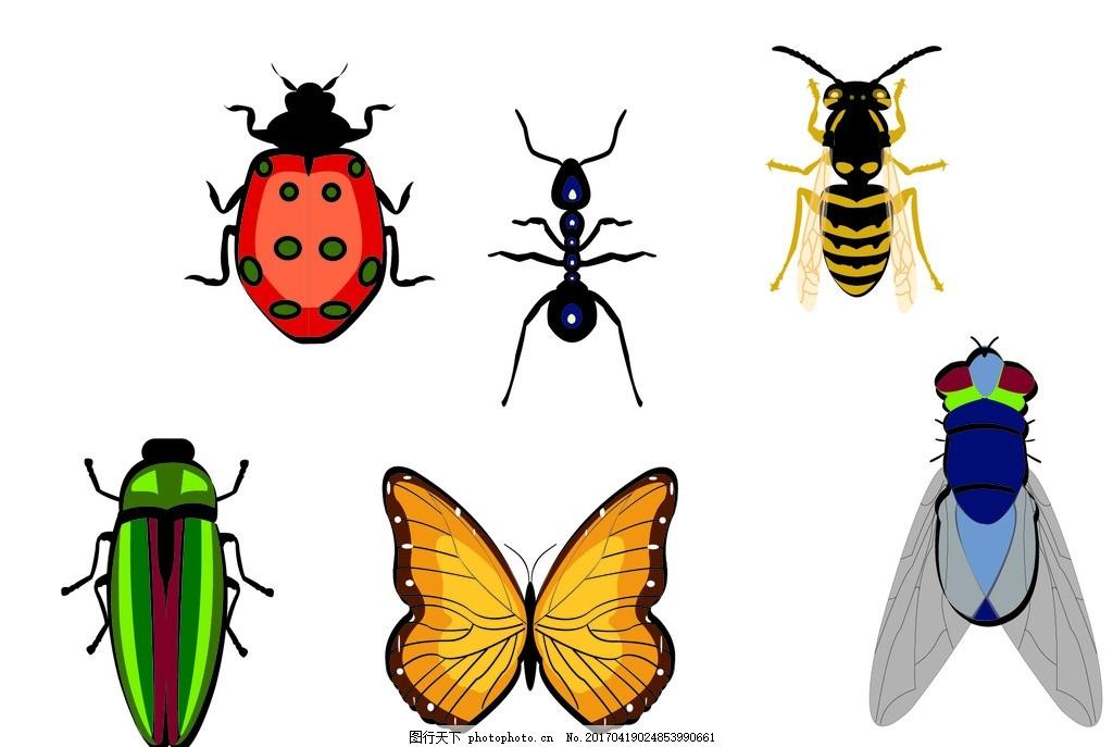 昆虫 动物 小生物 七星瓢虫 蚂蚁 苍蝇 蝴蝶 甲虫 设计素材