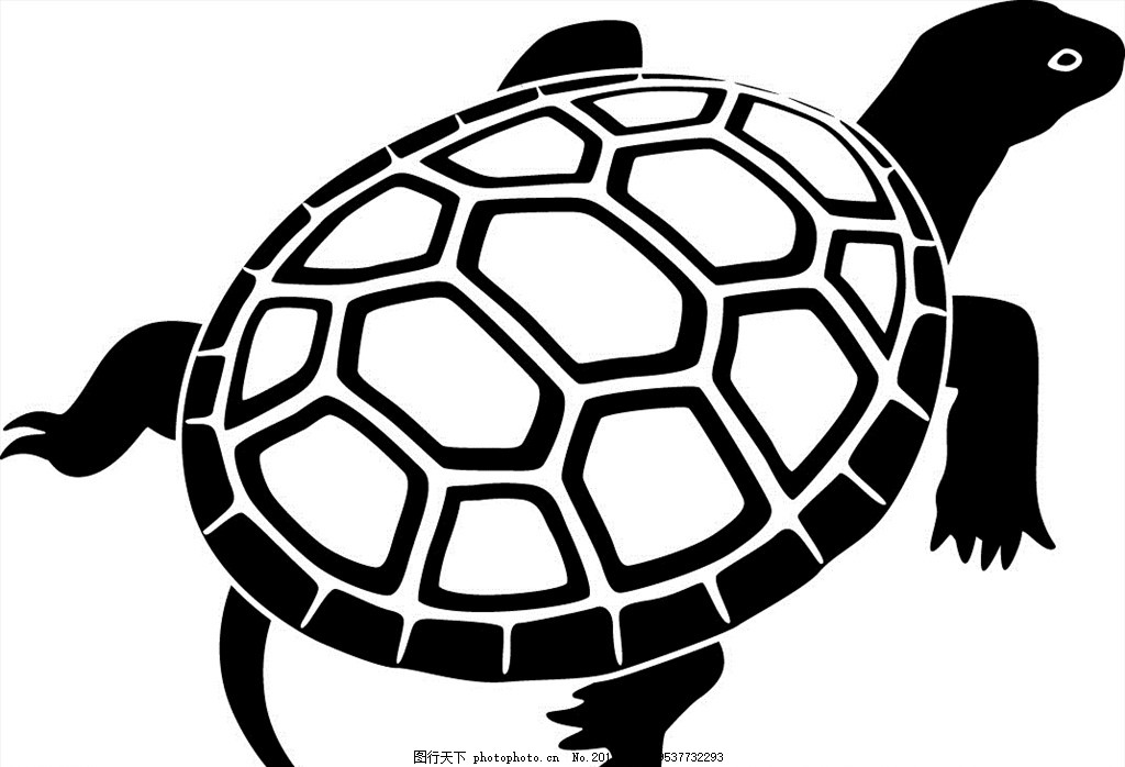 乌龟 卡通图案 矢量卡通图案 卡通动物 卡通小动物 矢量图 卡通壁画