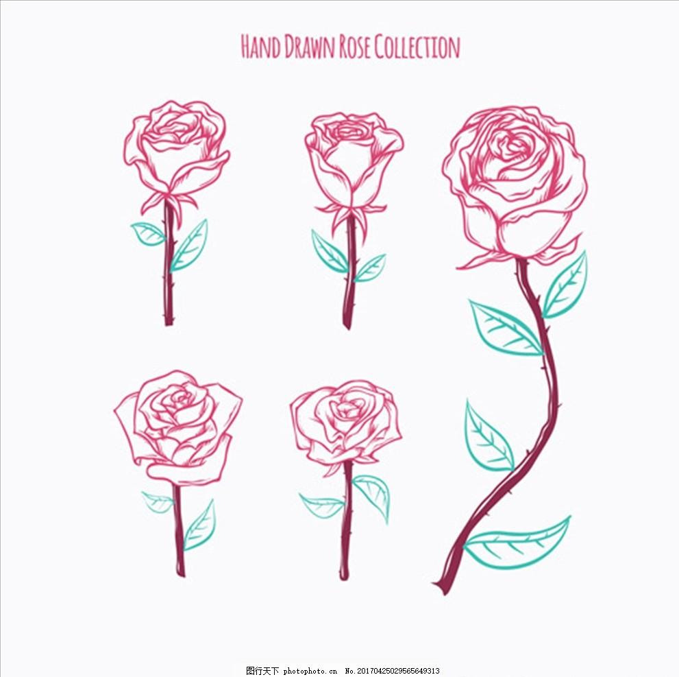 手绘玫瑰集合 情人节 情人节快乐 情人节海报 情人节背景 约惠情人节