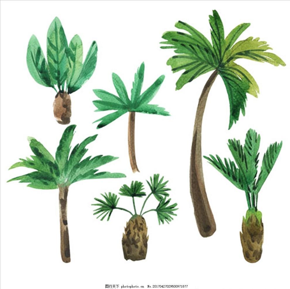 六款手绘水彩棕榈树