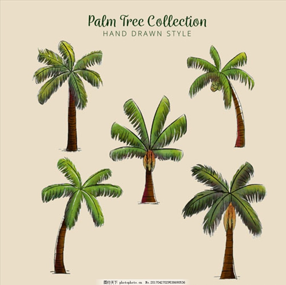 五款手绘水彩棕榈树