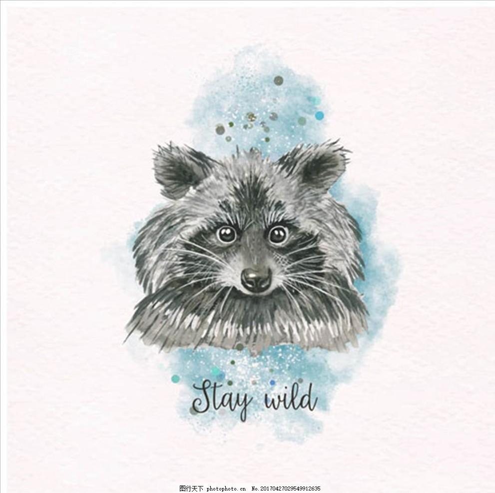 手绘水彩可爱的浣熊