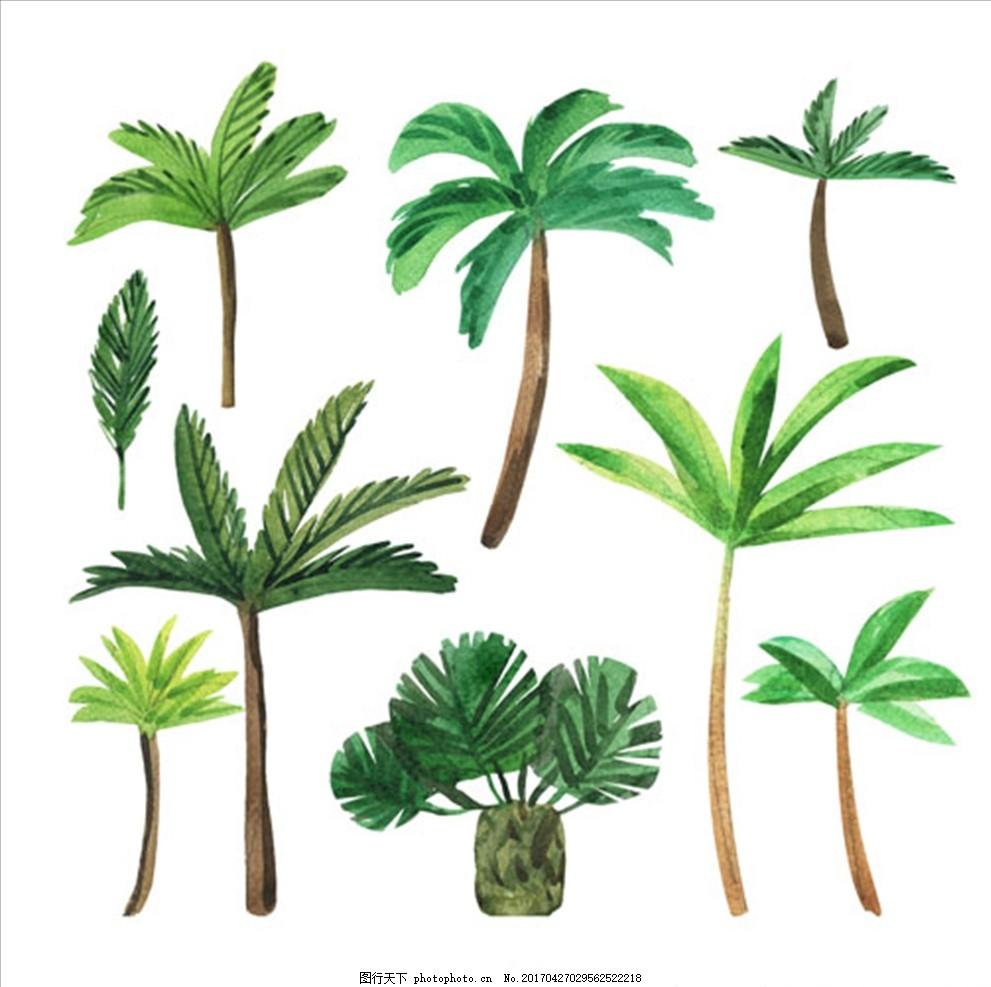 手绘水彩各种棕榈树