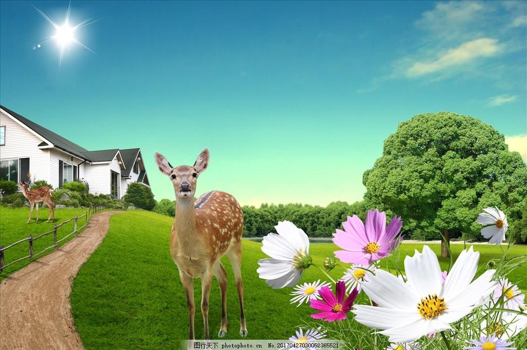 蓝天草地背景 蓝天草地 梅花鹿 鲜花草地 绿树蓝天 白云 小路 蓝天