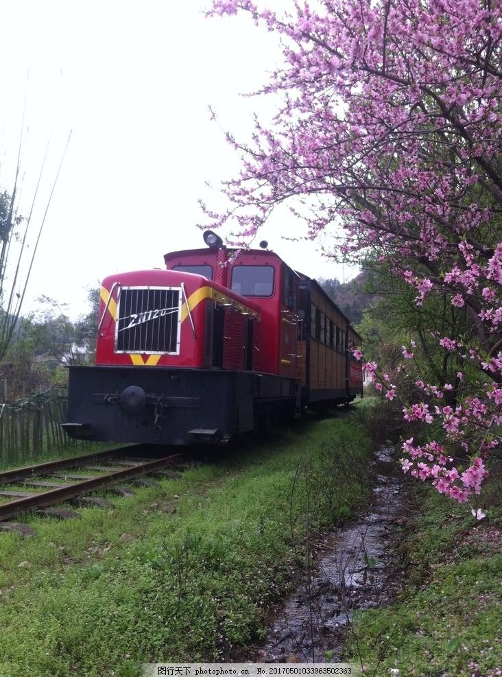 赣南森林小火车