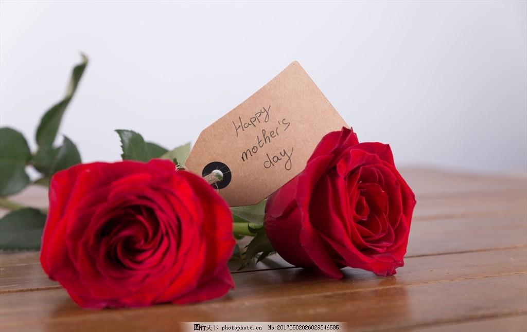 玫瑰花 红色玫瑰 红玫瑰 玫瑰花摆拍 桌子上的玫瑰 摄影 家居生活图片