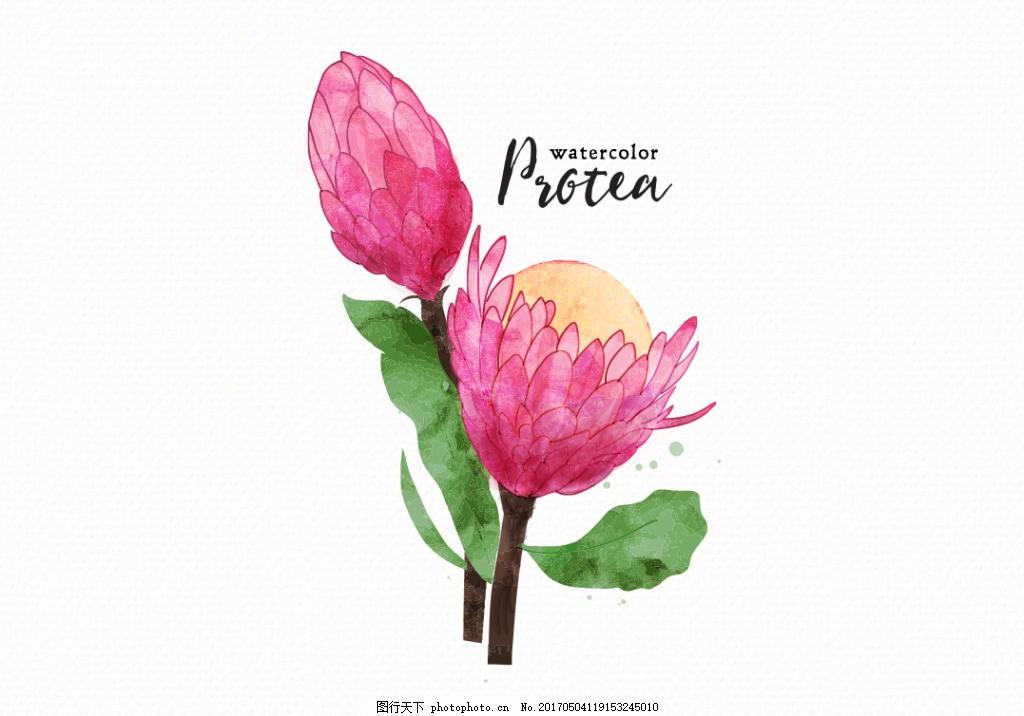 唯美水彩手绘花卉花朵