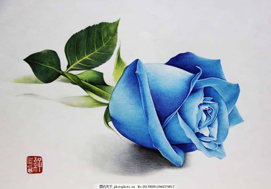 蓝玫瑰 手绘 背景 手绘蓝玫瑰 蓝玫瑰花语 色彩插画