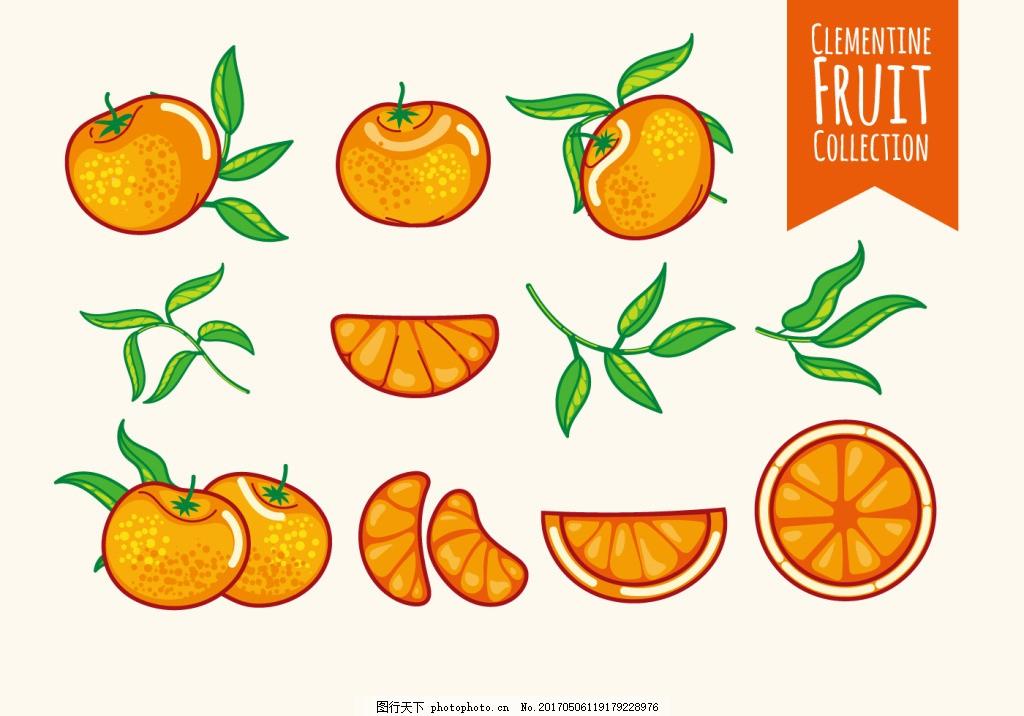 手绘矢量唯美橙子