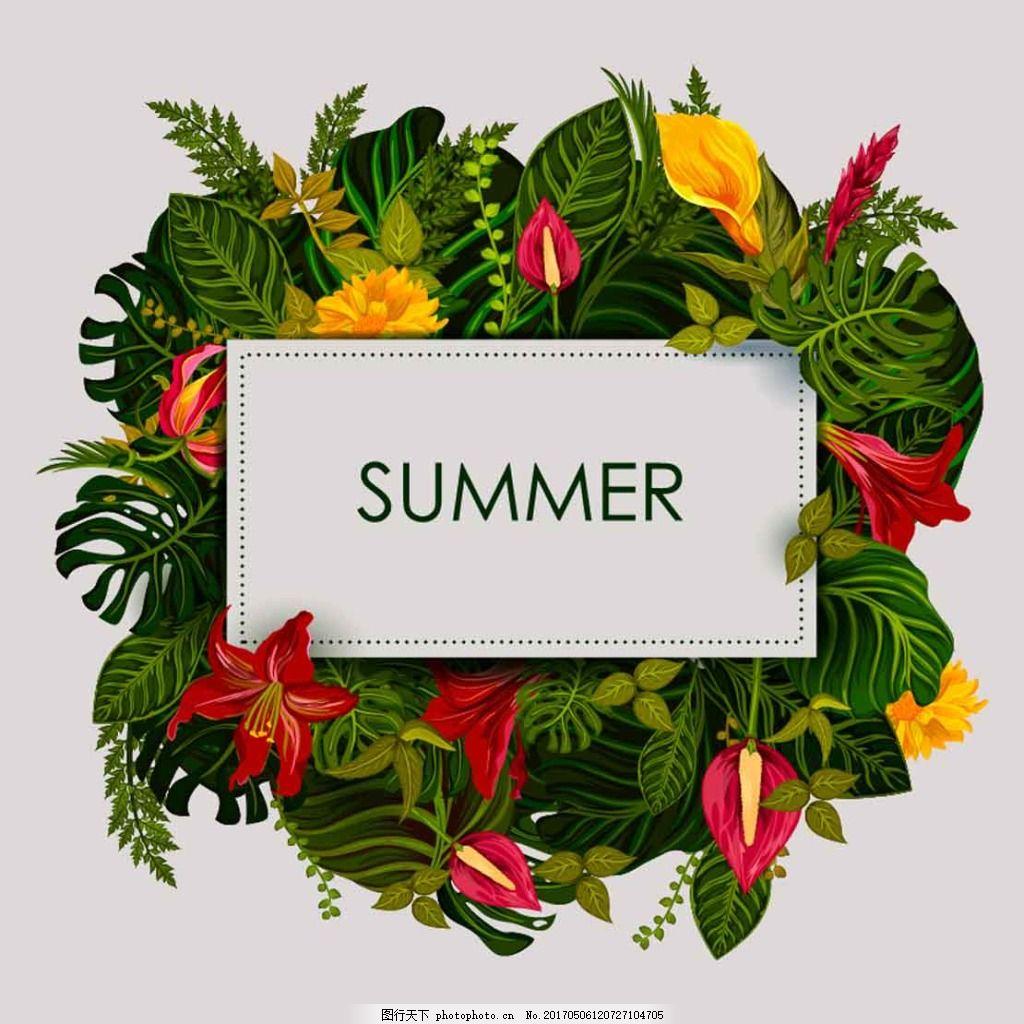 热带植物花边 花朵 边框