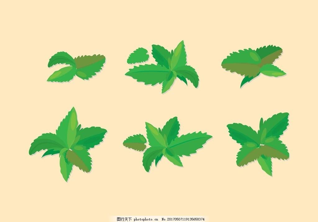 背景 壁纸 绿色 绿叶 树叶 植物 桌面 1024_716