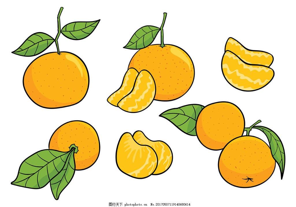 手绘橙子矢量素材