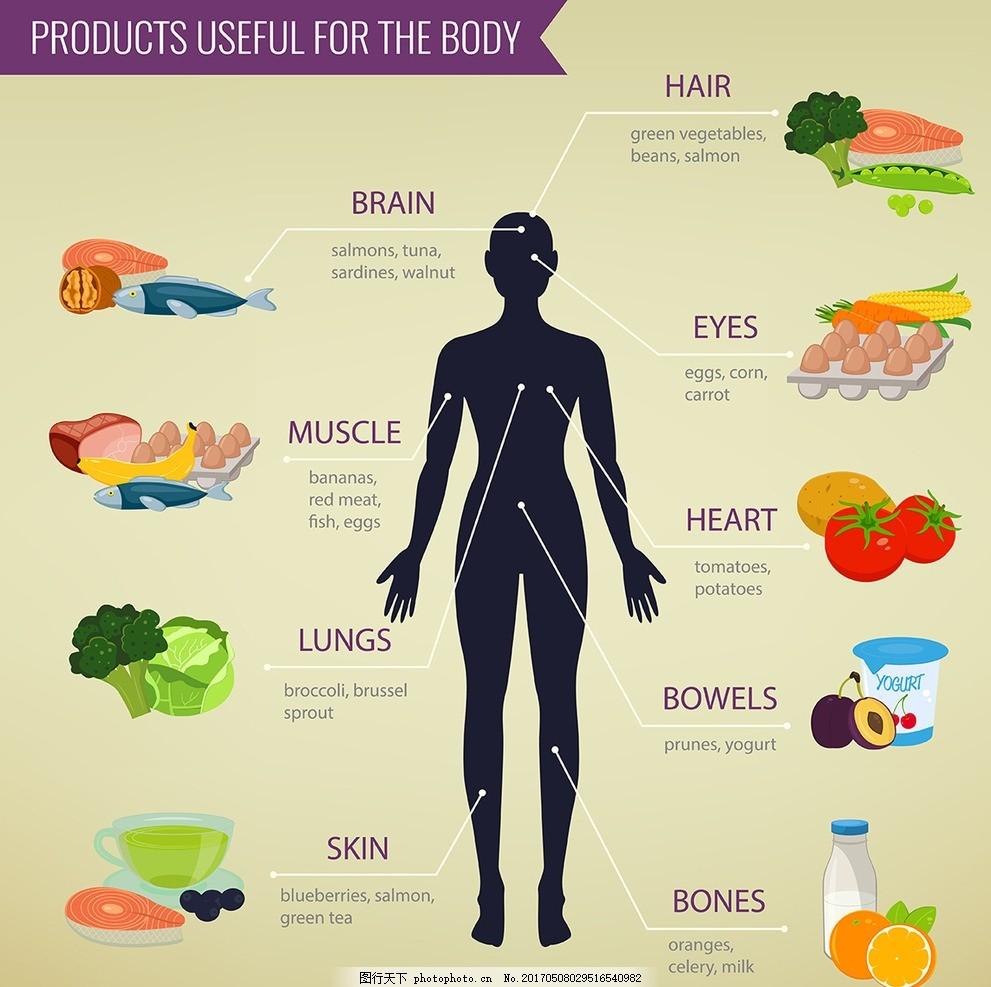 健康饮食分析图表 数据统计图表 基础图表 图形图标 数据分析 折线图图片