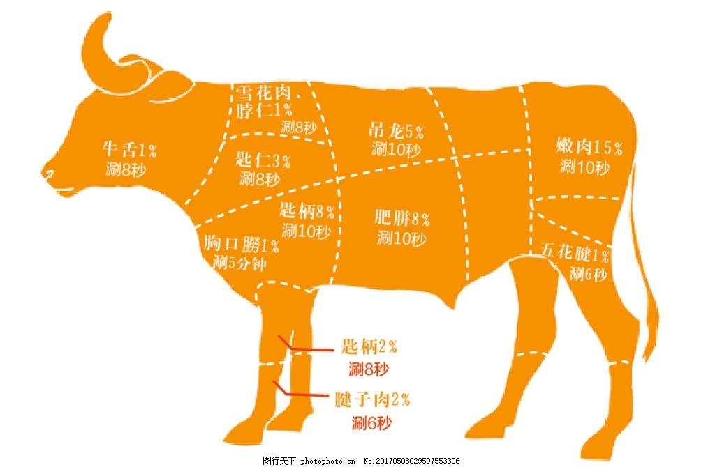 牛肉 分布图 模块 身体结构