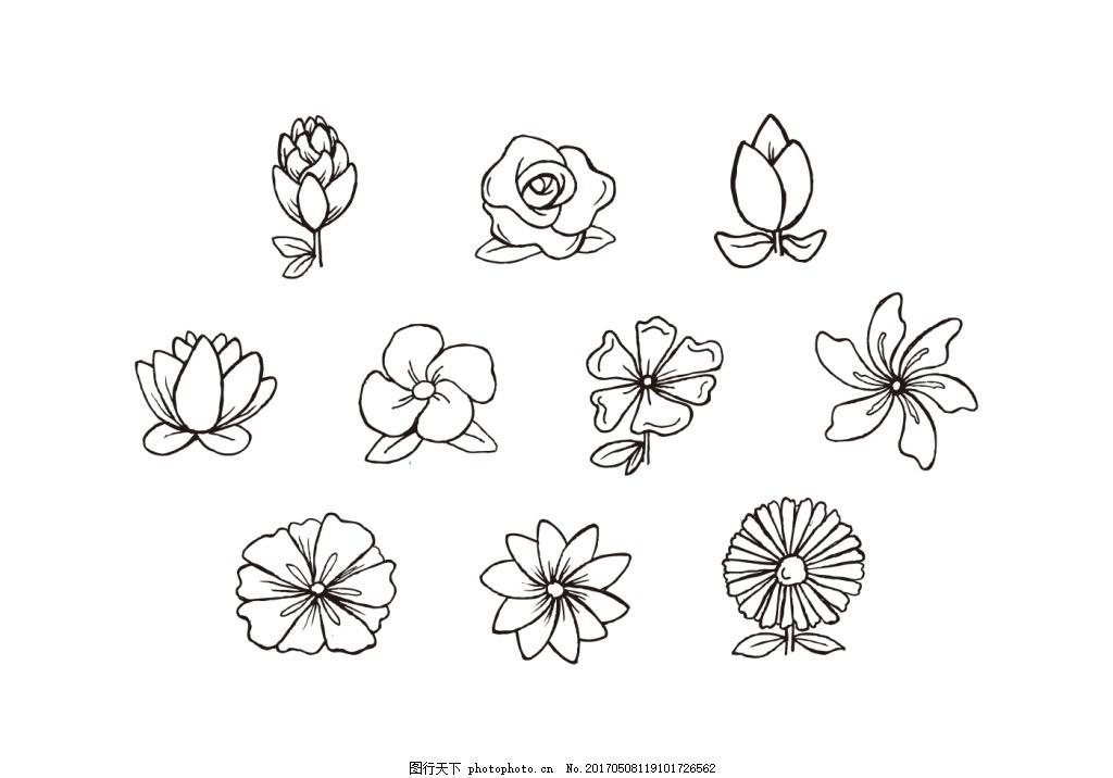 手绘花朵图案素材 手绘植物 手绘花卉 矢量素材