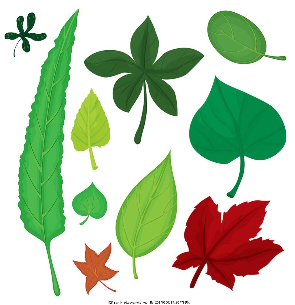 各种形状 叶子插图 矢量素材 一片绿叶 绿色漂浮叶子 飞舞绿叶 手绘