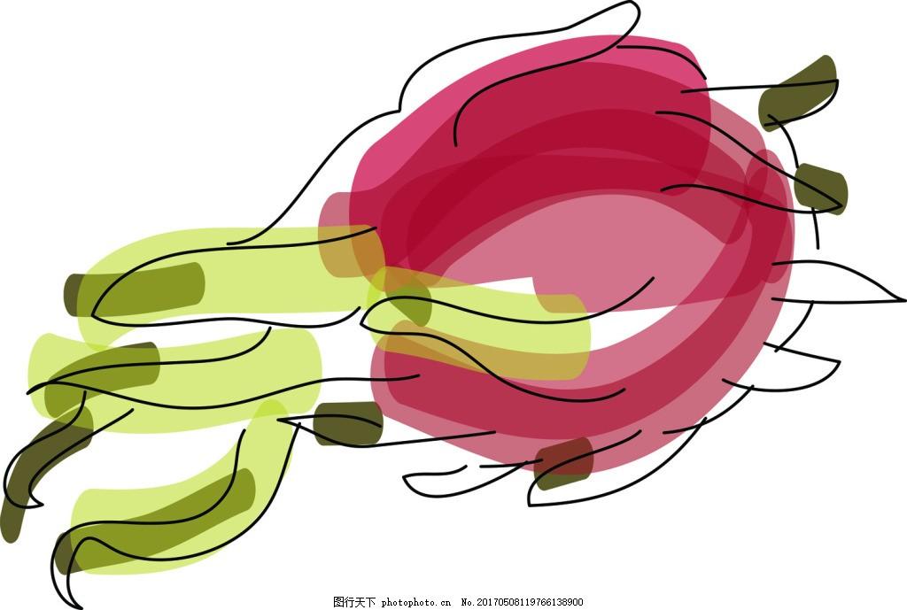 火龙果通水果水彩手绘风格矢量素材
