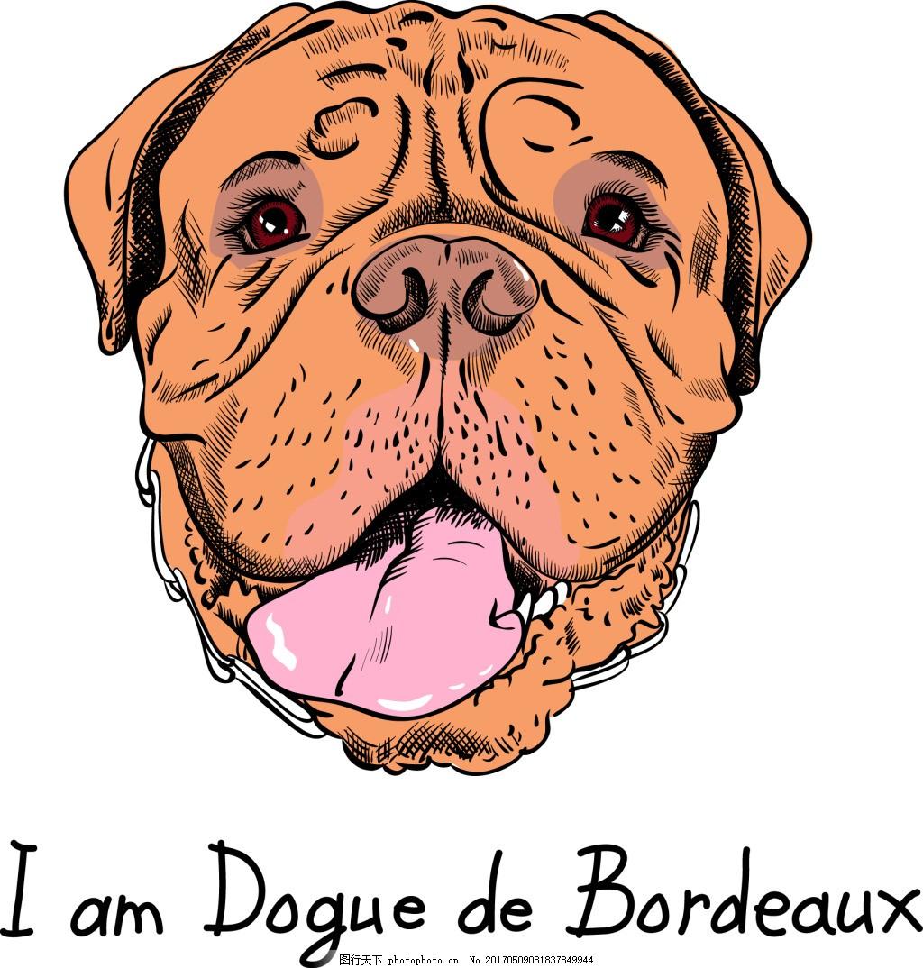 手绘沙皮狗头像 手绘 可爱 卡通 动物 沙皮狗