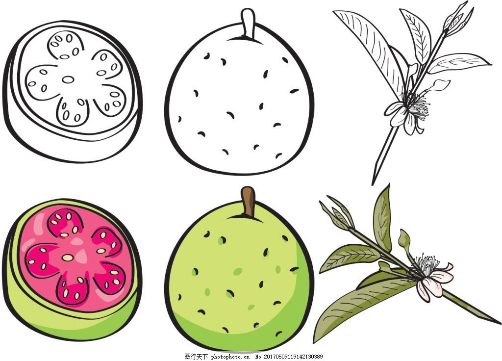手绘百香果水果