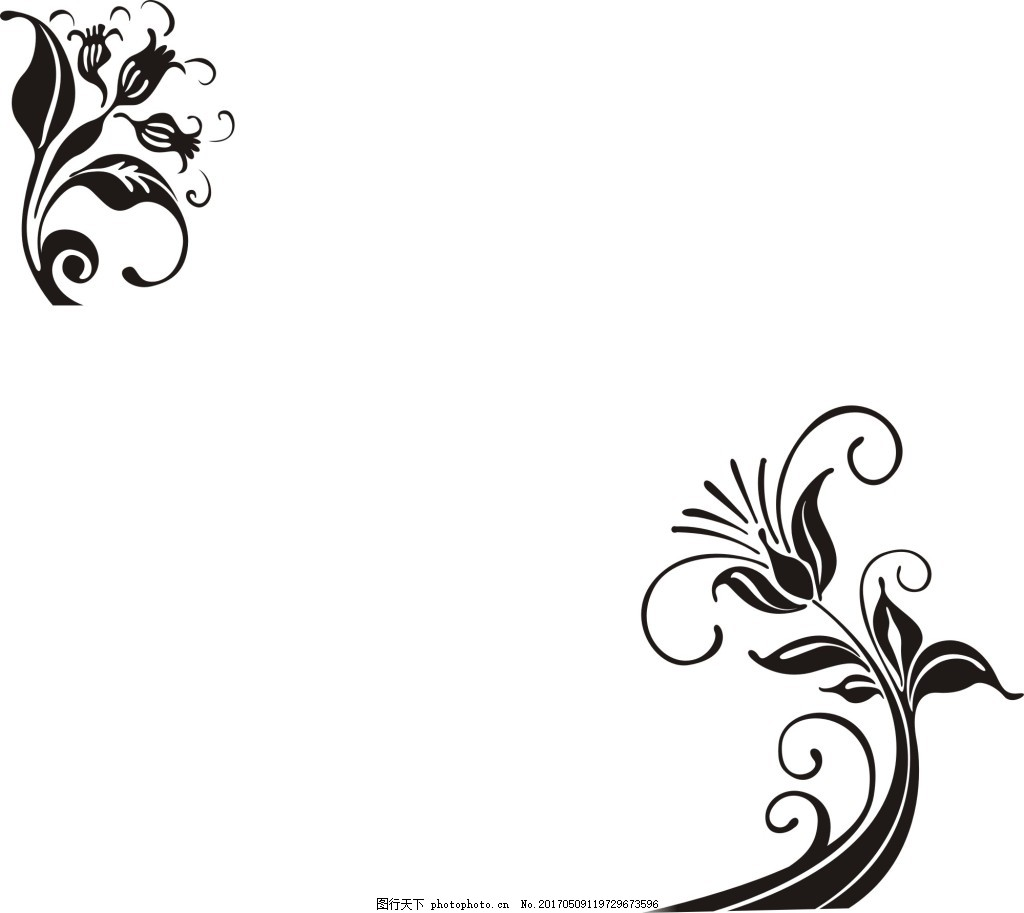 线条花 背景 玄关装饰 花草 风景背景 背景图片 广告背景 高清图片