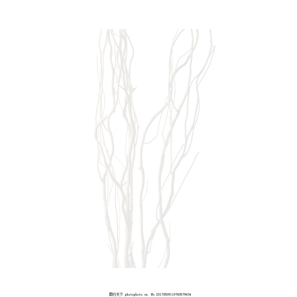 手绘线条元素