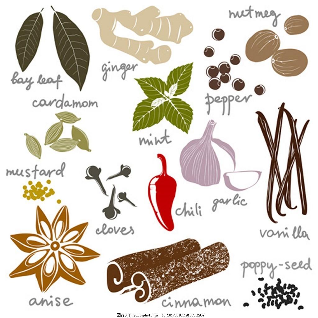 各种植物调料矢量图 广告背景 背景素材 素材免费下载 八角 大蒜