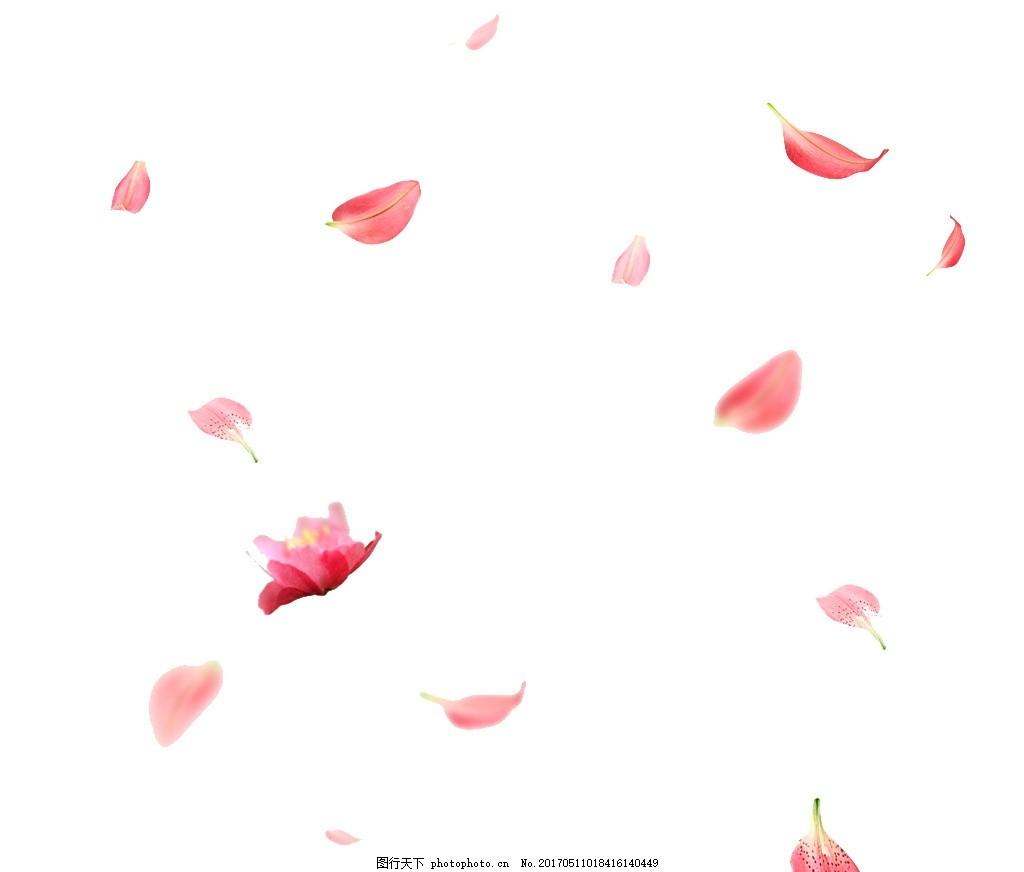 桃花 飘落 飘飘 花瓣 雪花瓣 动漫动画图片