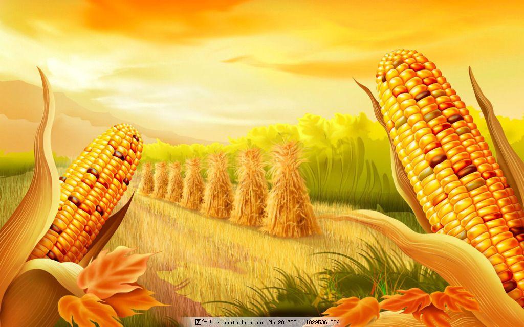 手绘黄色玉米背景