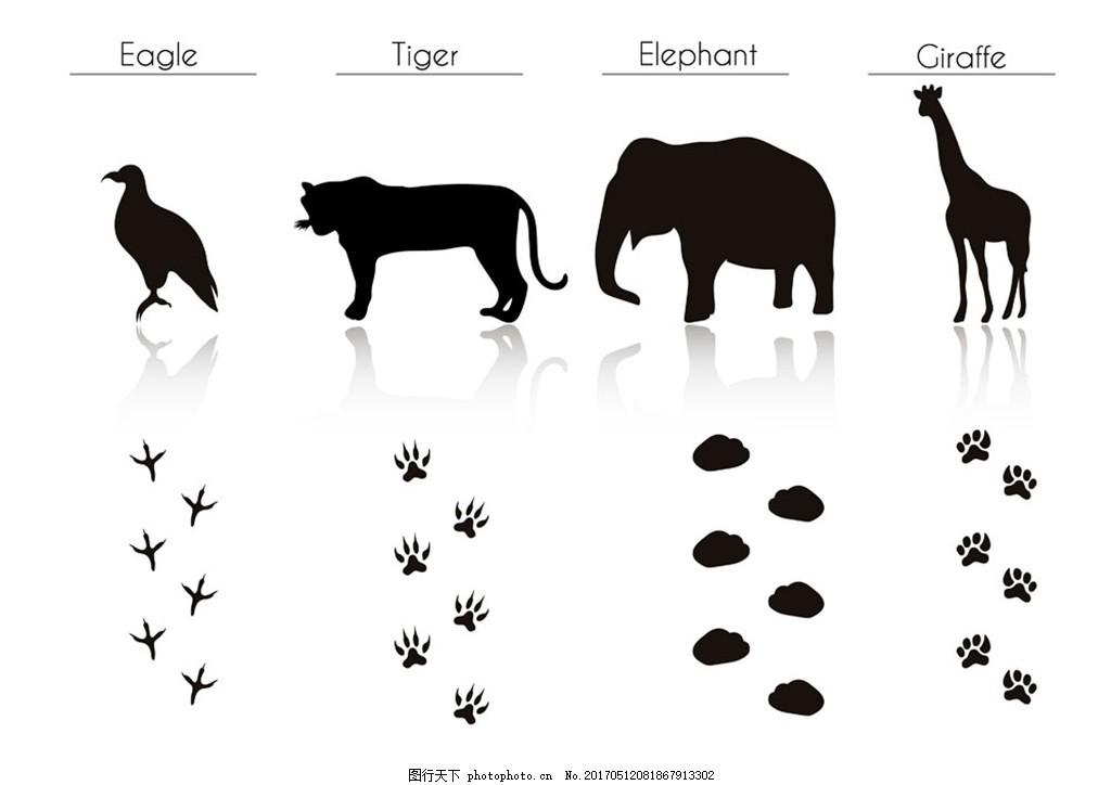 长颈鹿等动物剪影图片1 长颈鹿等动物剪影图片 动物脚印 野生动物