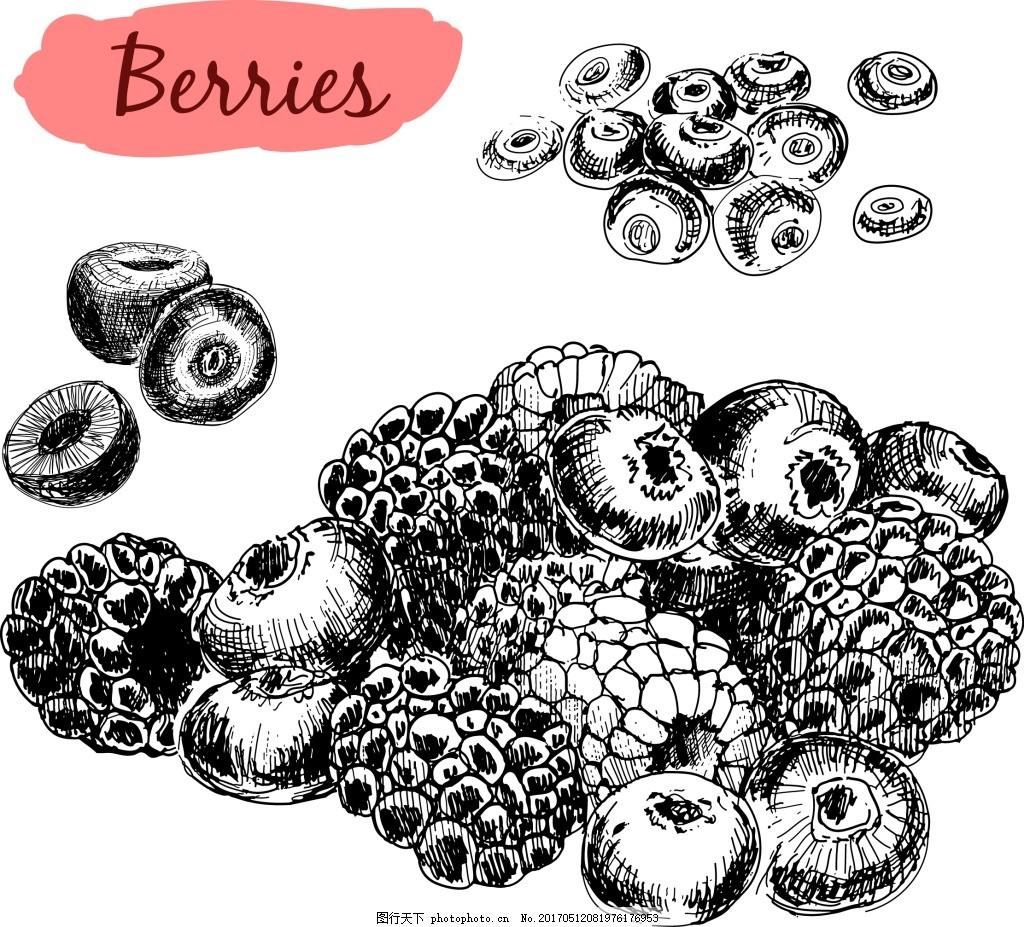 手绘黑白水果