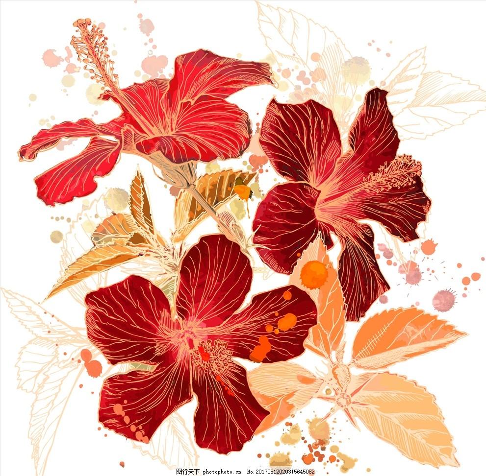 手绘花卉矢量