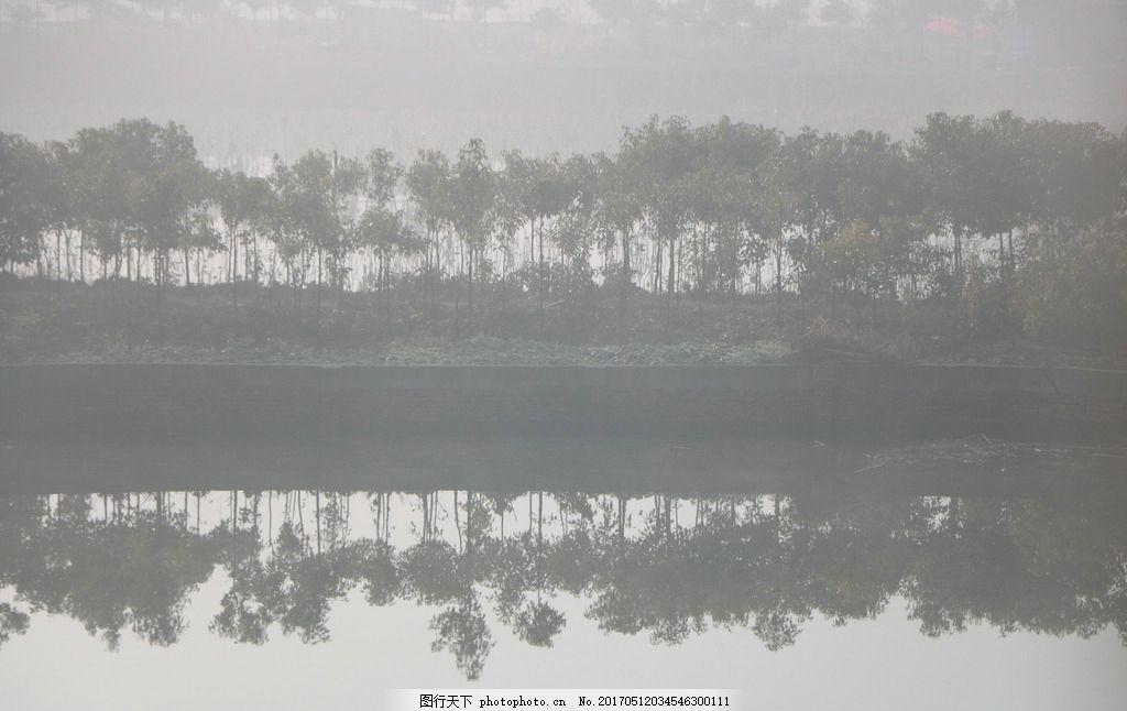 雾色水池塘 雾 阴天 池塘 树 倒影 灰色 水墨 摄影 自然景观 田园风光