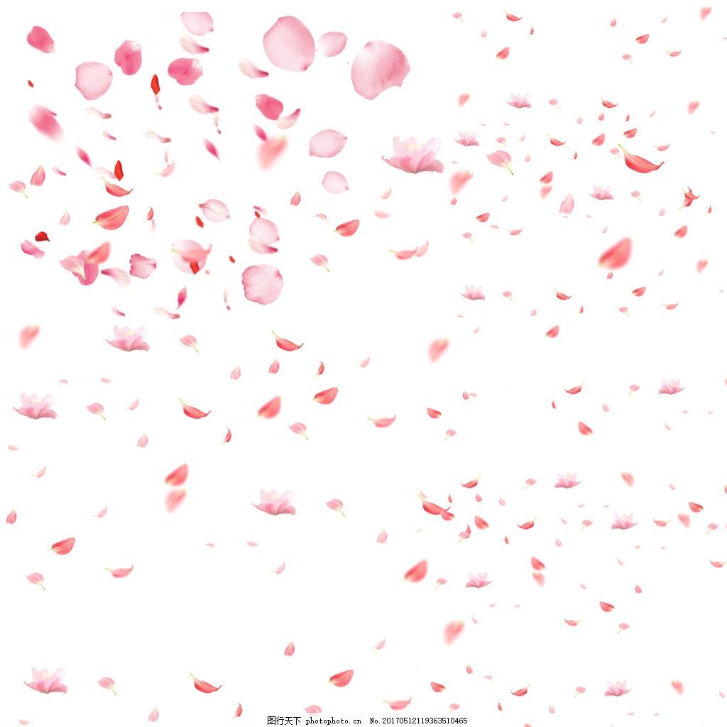 粉丝花瓣 花瓣飘落图片psd分层素材 花瓣 飘落 桃花瓣 浪漫 落花 白色