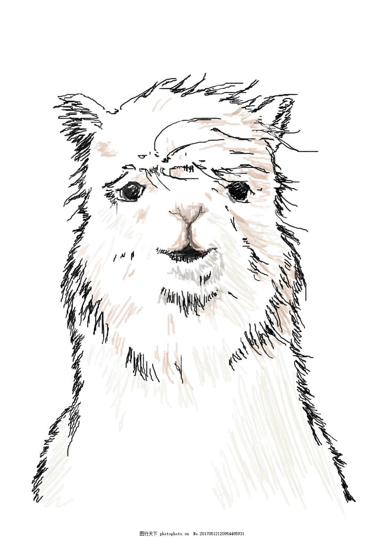 懵逼羊驼线稿 羊驼 分层图 懵逼 动物 手绘 线稿 手绘图 线条 llama