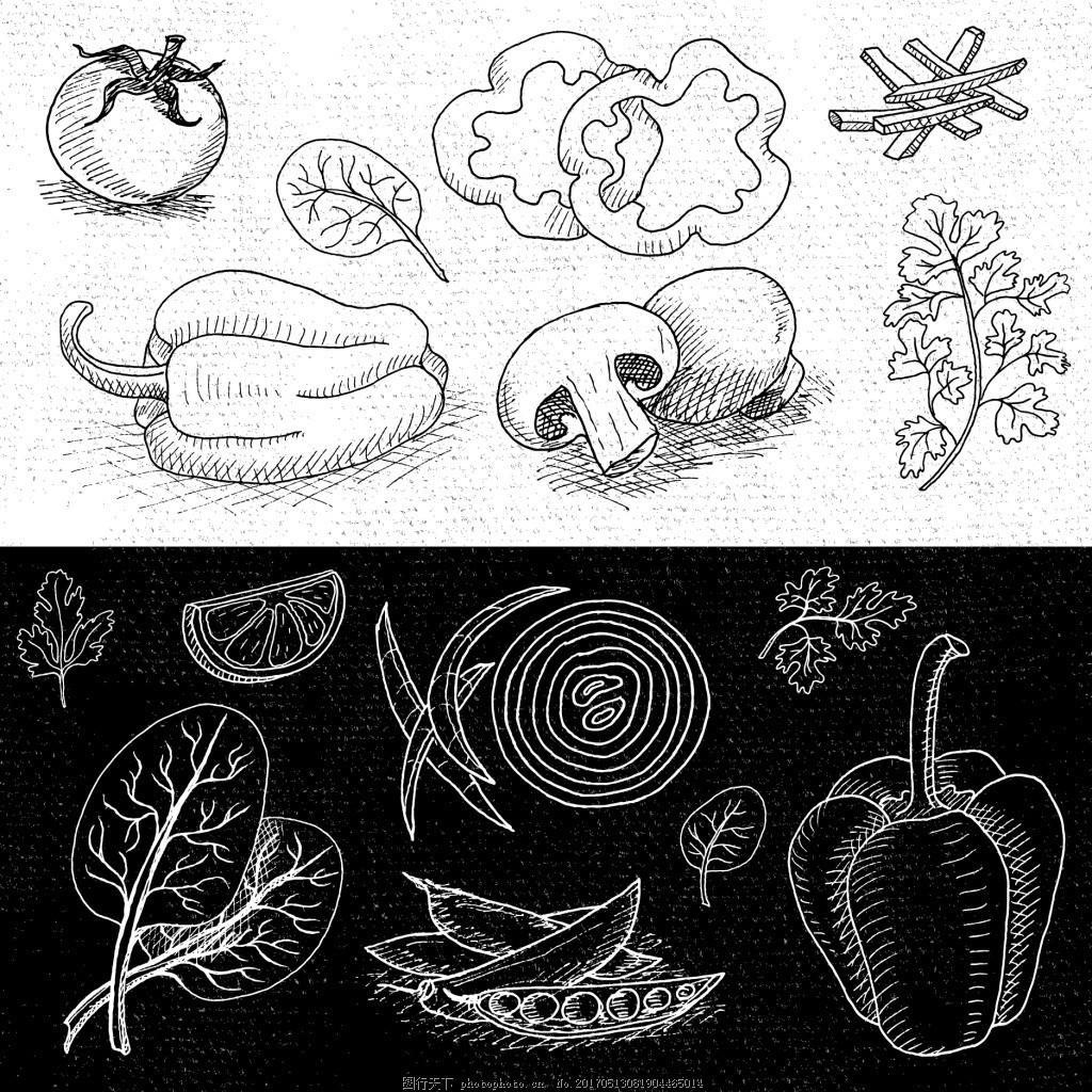 黑白手绘蔬菜