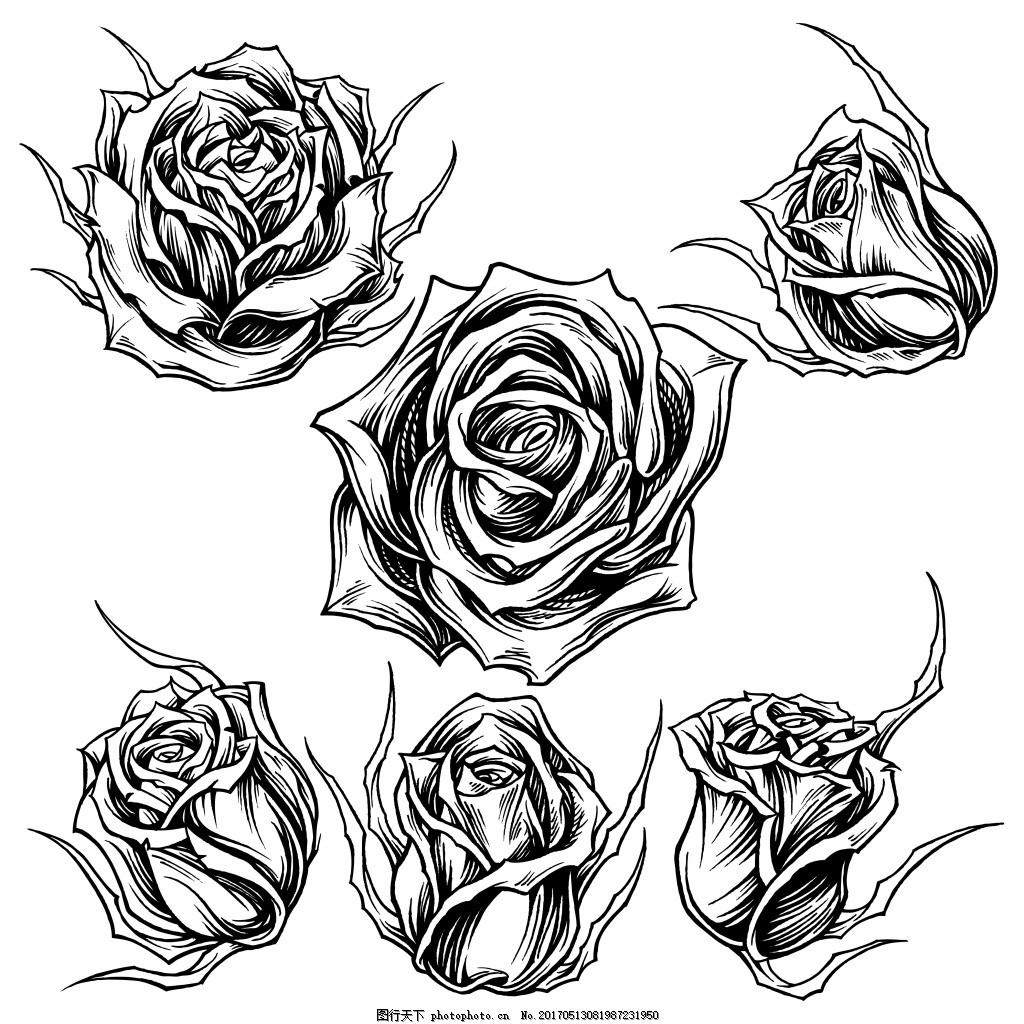 手绘黑白玫瑰花