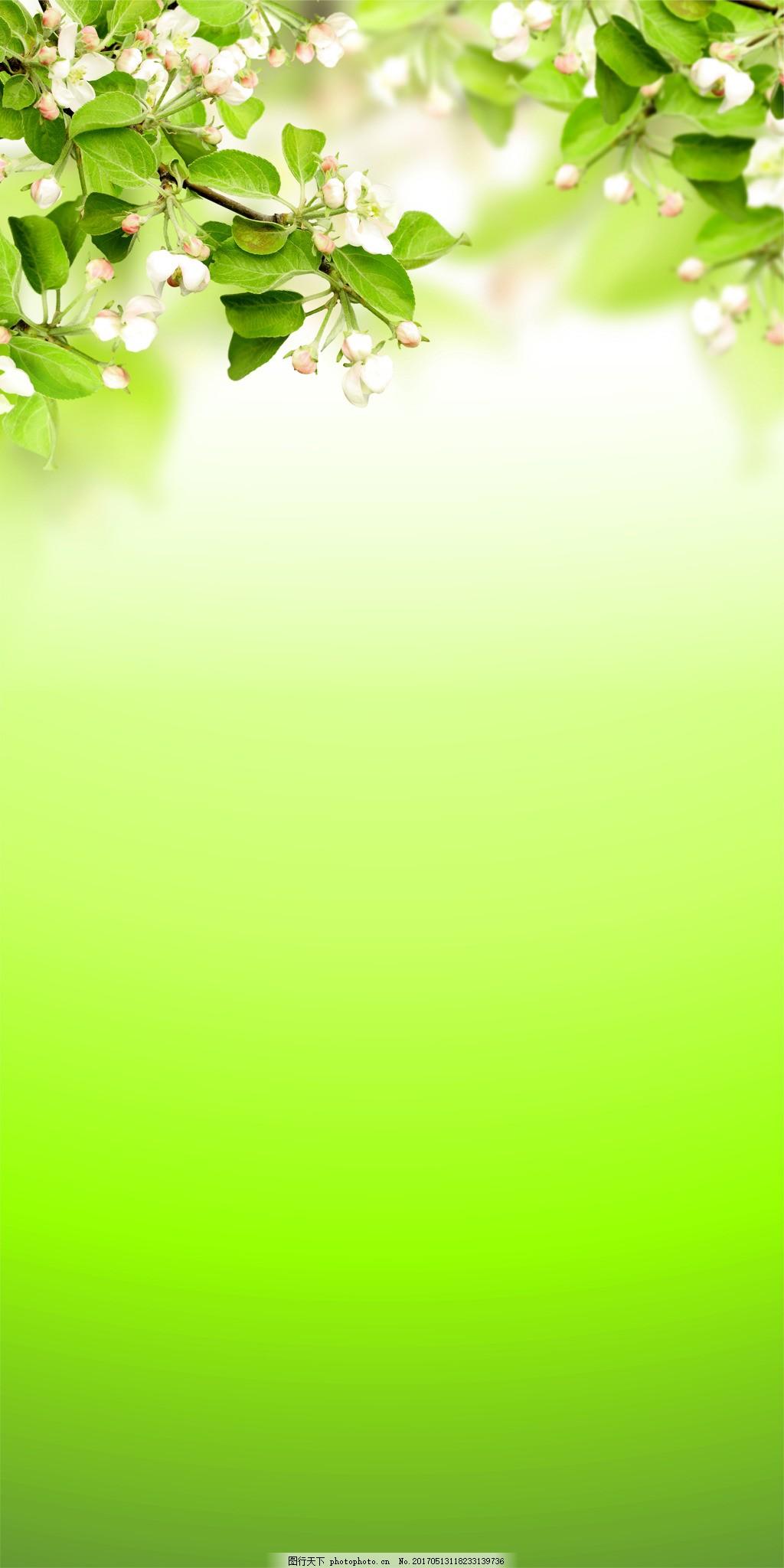清新绿叶花朵背景 手绘 绿色 清新 树叶 白色 花朵 渐变 背景