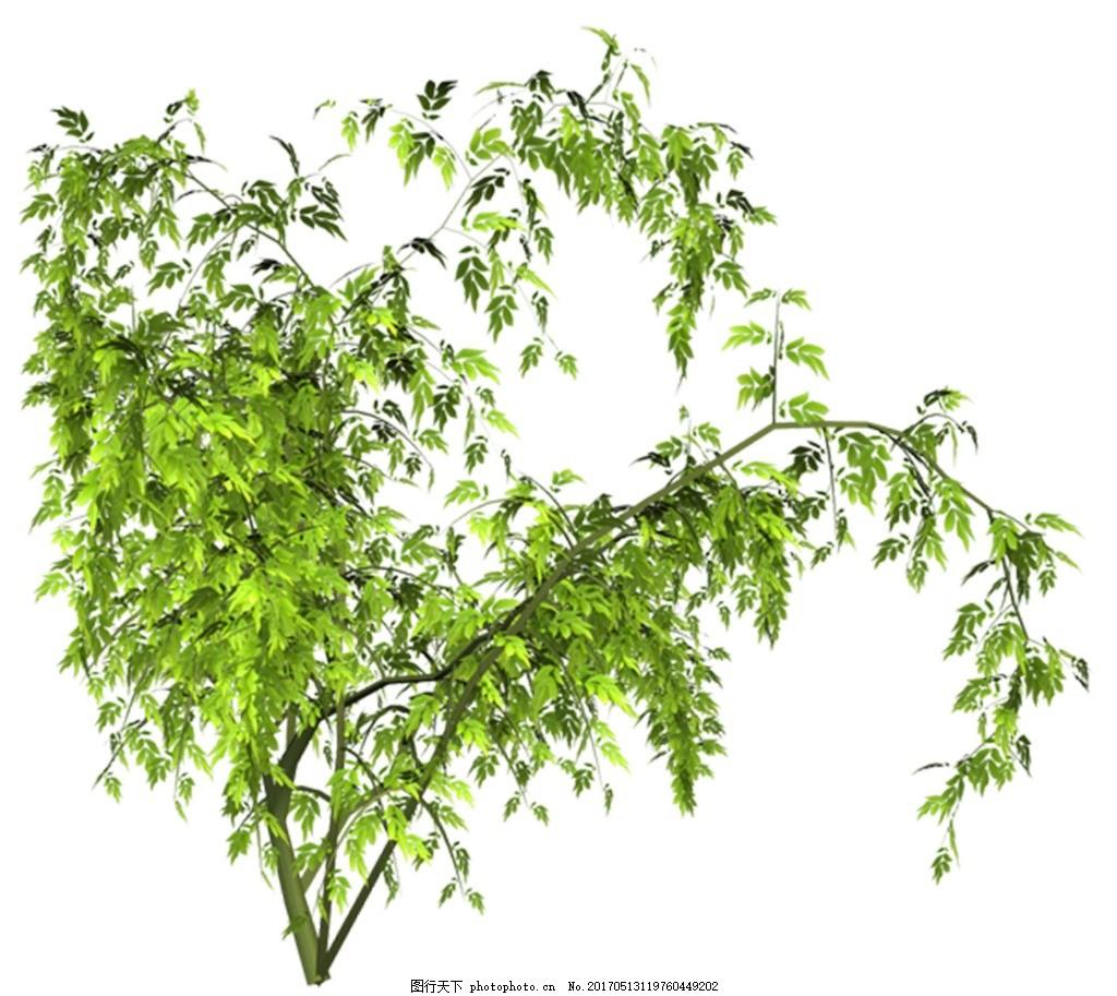 绿色树枝元素 手绘 树叶