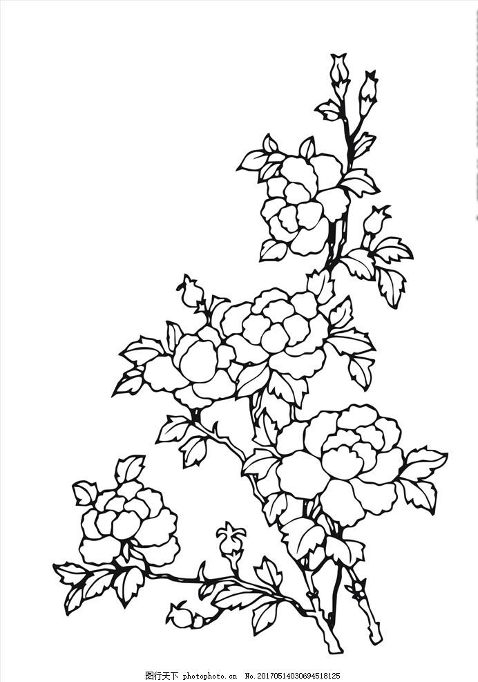 线描花朵 线描花卉 花卉 叶子 线描花朵花卉 花 树枝 树干 植物花卉