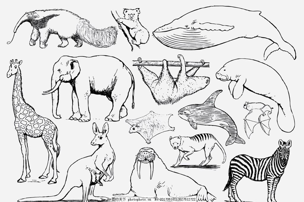 大象 狐狸 松树 水牛 牛 狗 老虎 斑马 手绘动物 动物 插画狮子 狮子