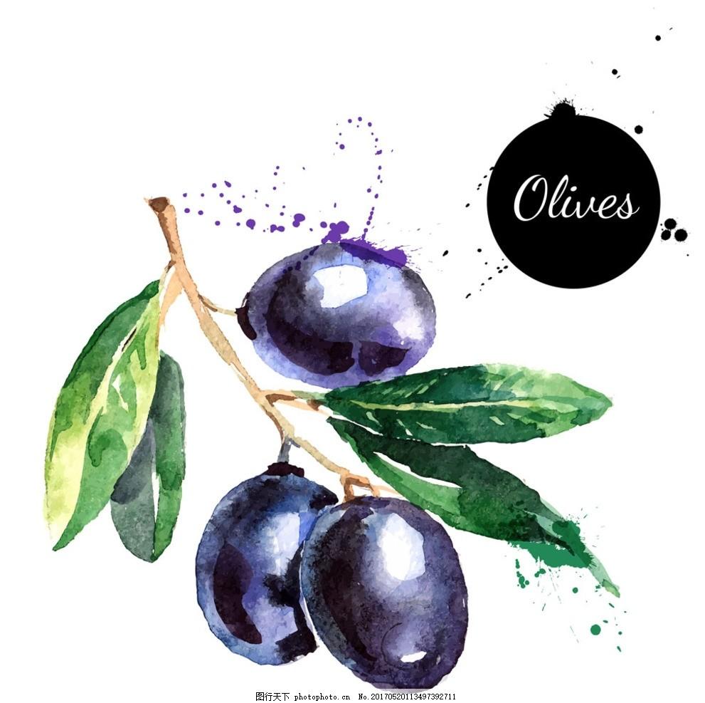 西梅,手绘西梅 水果 手绘水果 水果食品 洋葱 美味-图