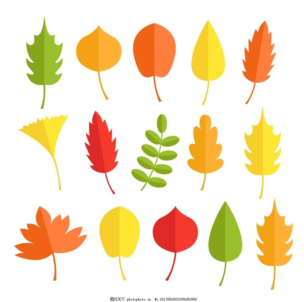秋季叶子手绘 自然 扁平 平面设计 植物 药草 包草药 秋天 树叶图片