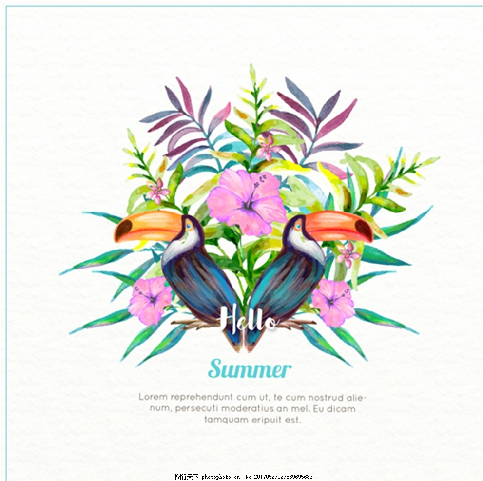 手绘水彩夏日巨嘴鸟花卉插图 夏天 鱼 海螺 鲨鱼 海豚 鲸鱼 珊瑚 海星