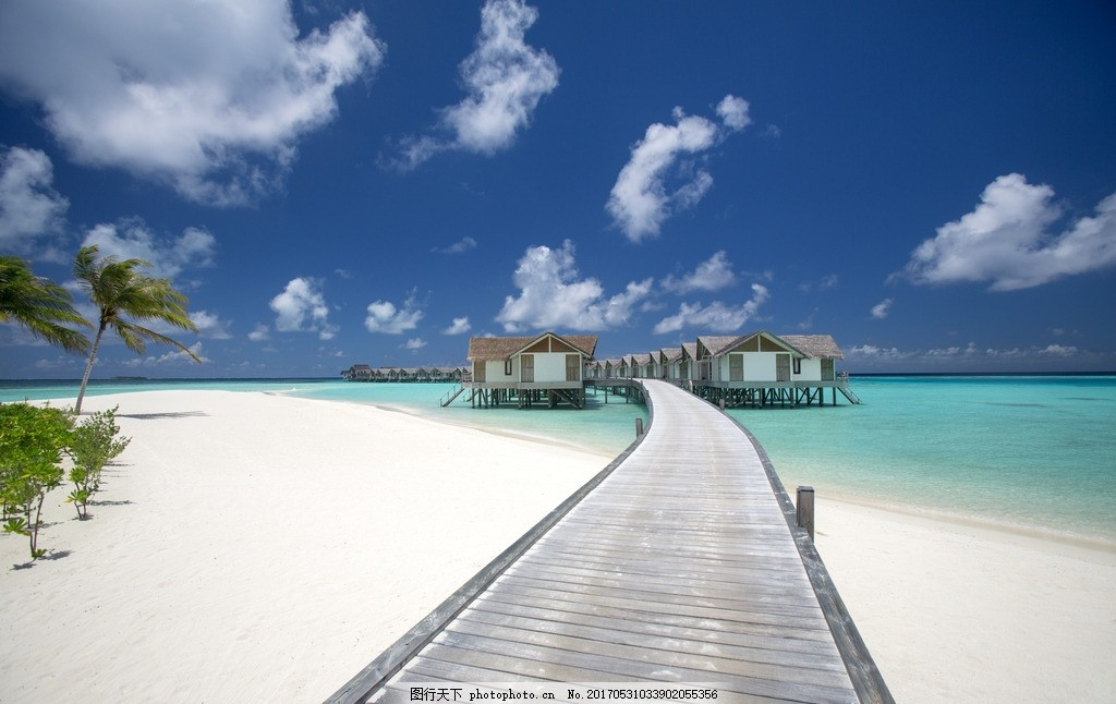 马尔代夫风景 双鱼岛 水上屋 马尔代夫 棕榈 棕榈树 海边风景 风光 椰