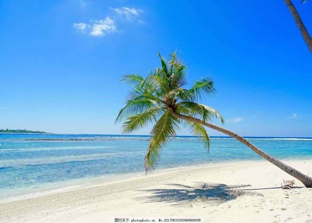 海边椰树 双鱼岛 水上屋 马尔代夫 棕榈 棕榈树 海边风景 风光