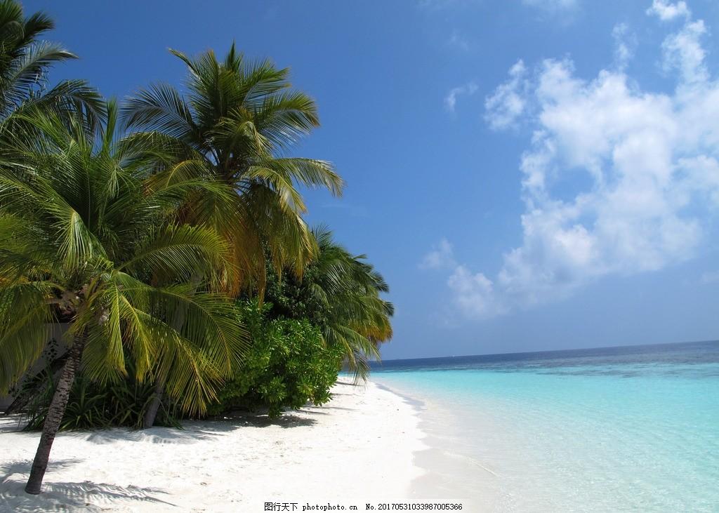 水上屋 马尔代夫 棕榈 棕榈树 海边风景 风光 椰树 椰子树 沙滩 海滩