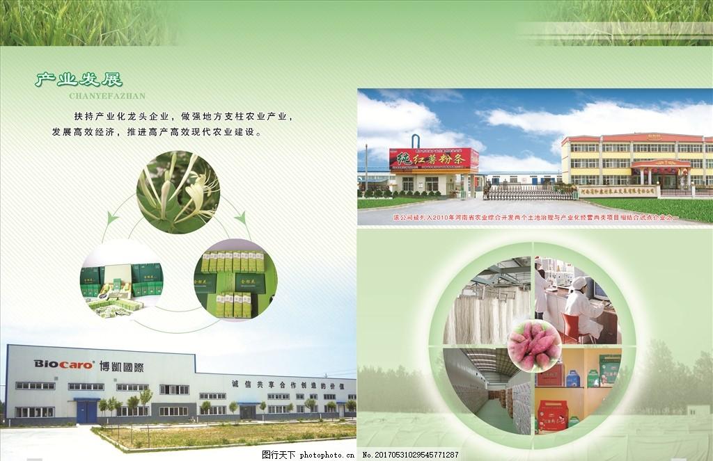 企业宣传 企业 宣传 划船 海报 金银花 粉条 红薯 形象 建筑 设计
