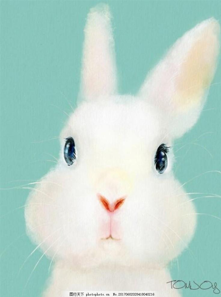 小白兔 装饰画 可爱 卡通 动画 小动物 萌萌哒      小白兔 高清素材