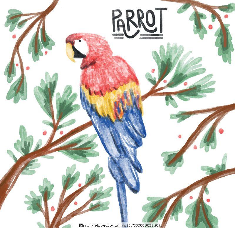 植物 鸟 水彩 树枝 金刚鹦鹉 叶子 手绘 动物 彩铅画
